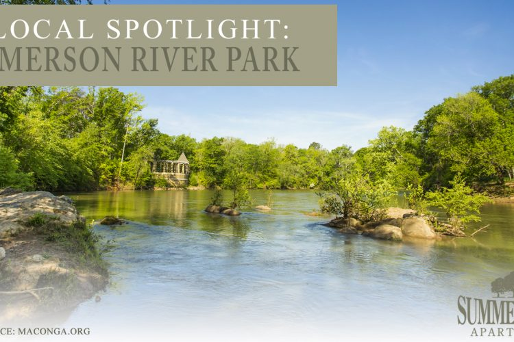 Local Spotlight: Amerson River Park