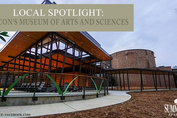 Local Spotlight: Macon's Museum of Arts and Sciences