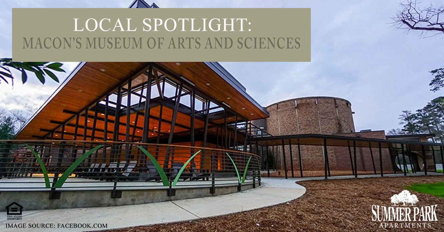 Macon's Museum of Arts and Sciences